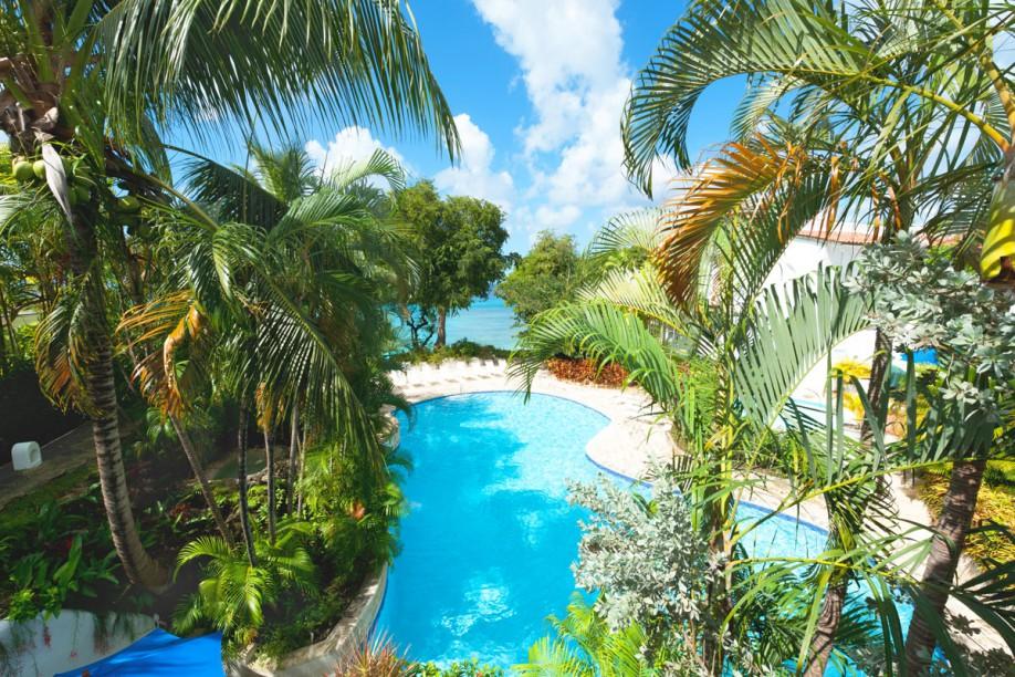 Lush poolside view